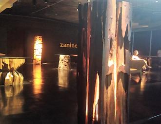zanine1_(2).png