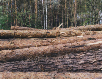 close-up-of-stacked-logs.jpg